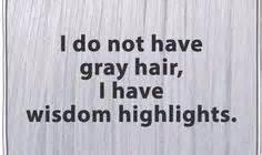 wisdom highlights