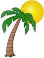 palm-trees