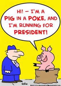 pig-in-a-poke